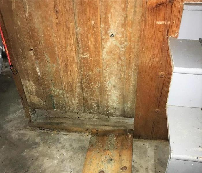 wood wall with mold on it, stairs to right