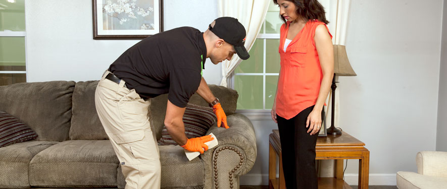San Mateo, CA carpet upholstery cleaning